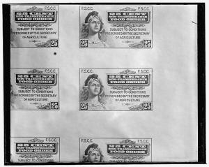 Food Stamps from 1939. The paper stamps hav since been replaced with electronic  benefit transfer (EBT) cards. (Wikimedia Commons)